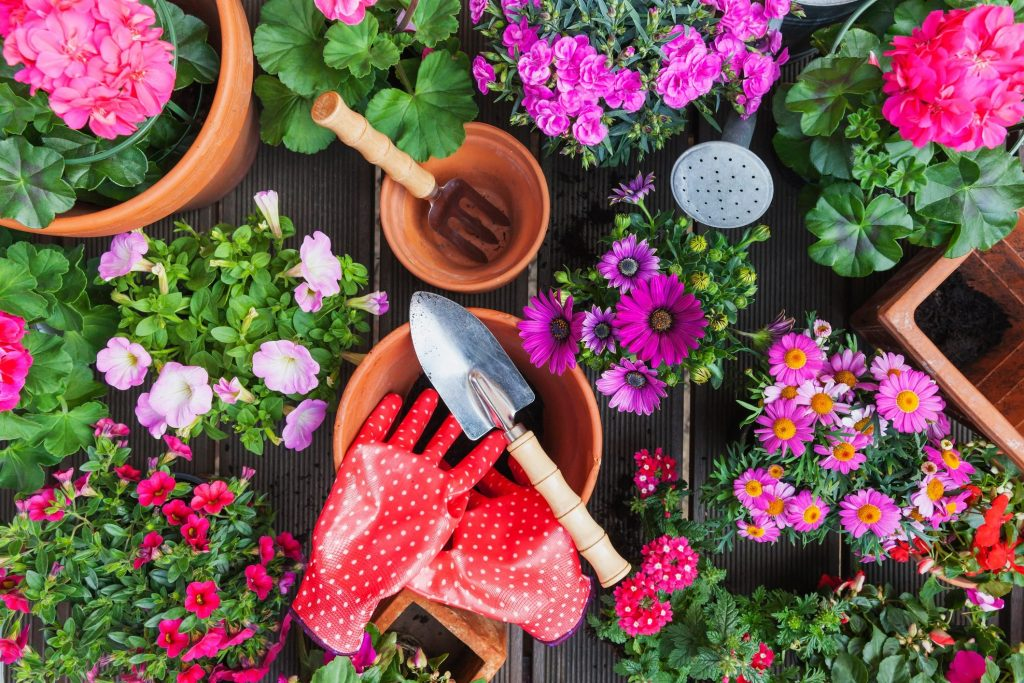How to decorate your garden easily