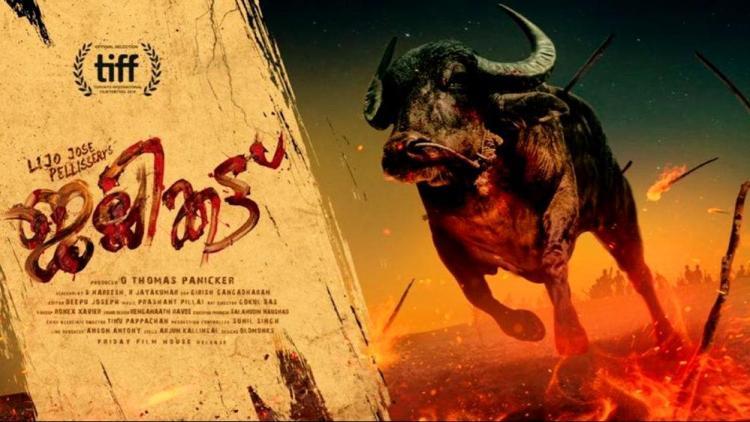Horrifying thriller tale of buffalo: Jallikattu